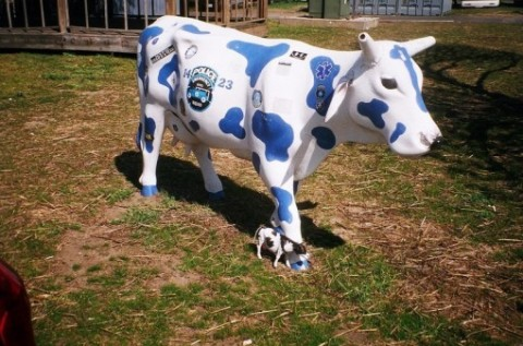 NYPD ESU UN OFFICIAL MASCOT - MOLLY